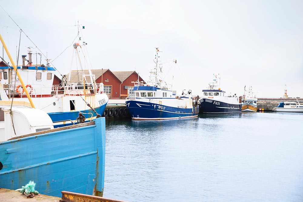 Fiskebåtar på rad i Glommens hamn.