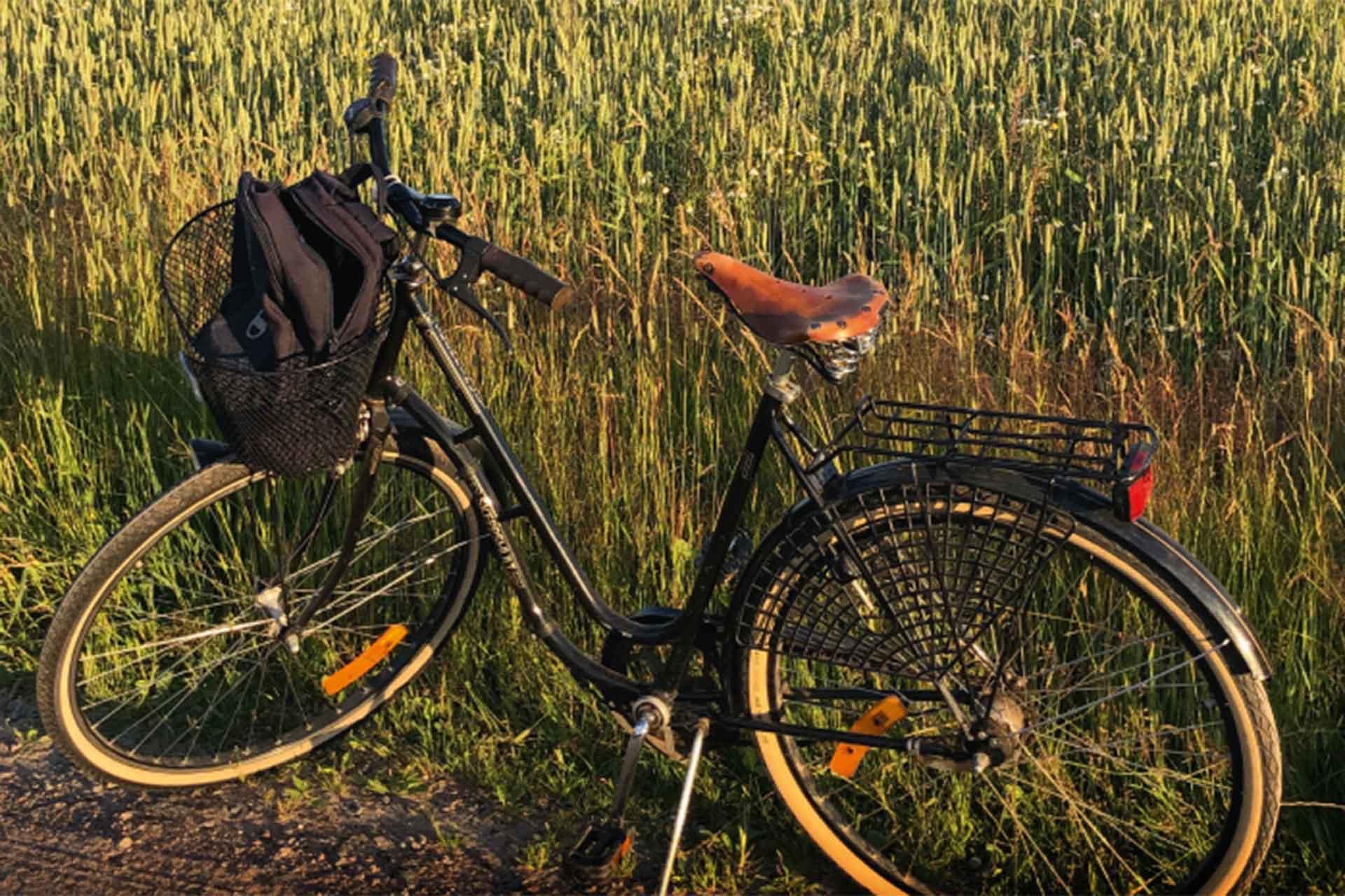 Cykel vid sädesfält.